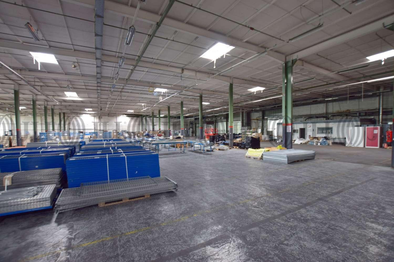 Hallen Bochum, 44866 - Halle - Bochum, Wattenscheid - D2559 - 10020738