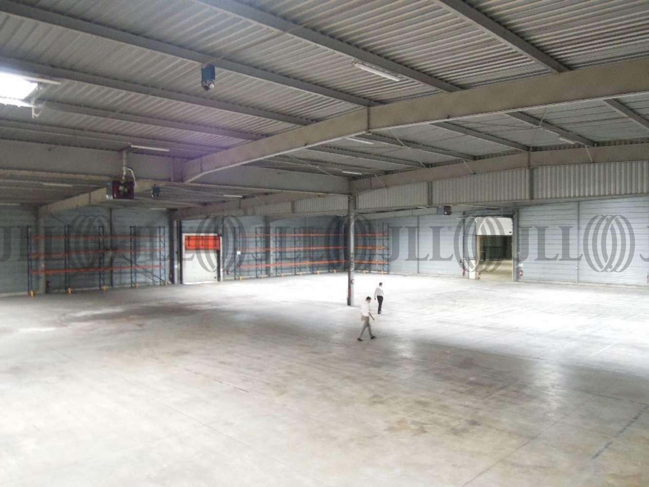 Activités/entrepôt Belleville, 69220 - Entrepôt à louer Lyon Nord - Rhône (69) - 10021061