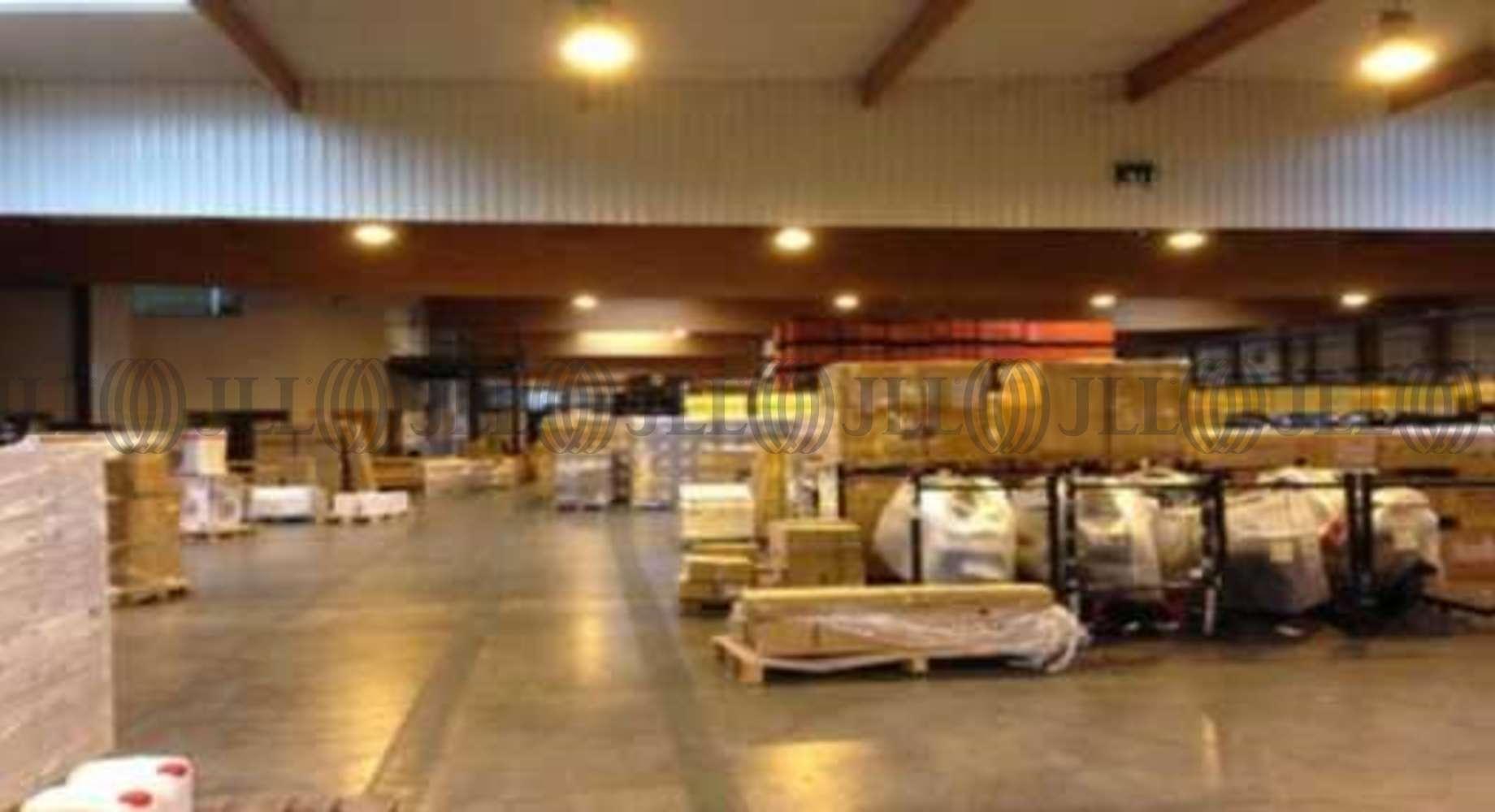 Plateformes logistiques Villeneuve les bouloc, 31620 -  RUE DU GIROU - 10021902