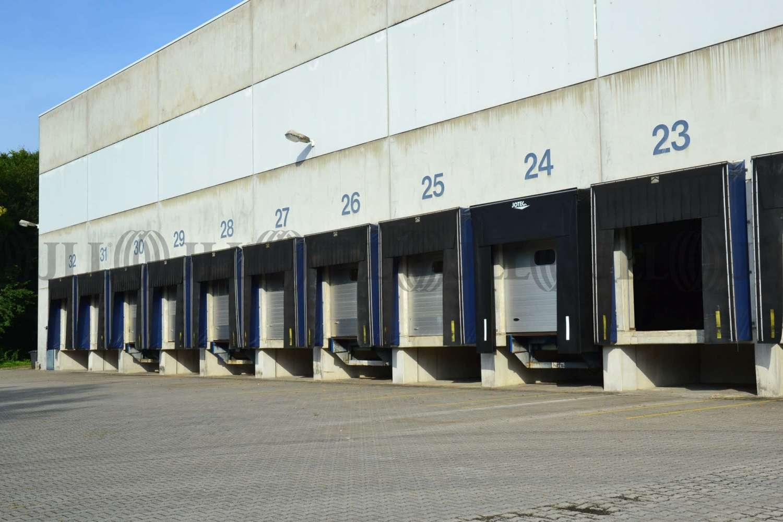 Hallen Wuppertal, 42327 - Halle - Wuppertal, Vohwinkel - D1212 - 10021958