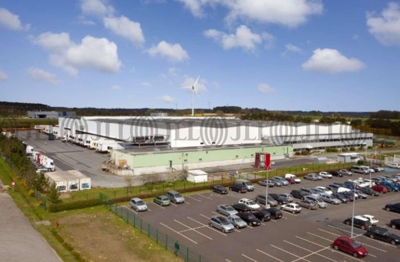 Plateformes logistiques Grand fougeray, 35390 - Vente Entrepot - Proximité Rennes - 10029423