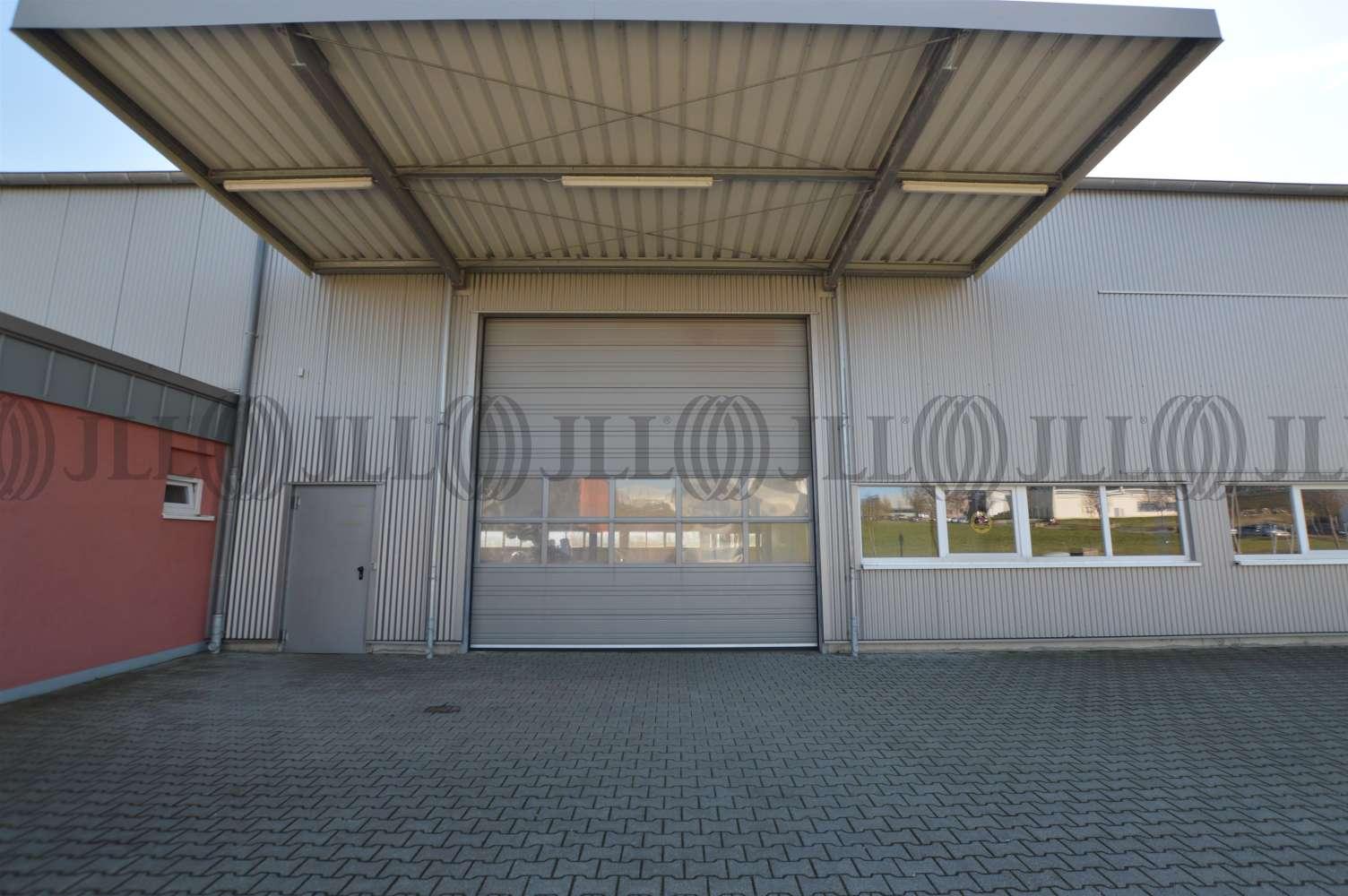 Hallen Grafschaft, 53501 - Halle - Grafschaft, Ringen - K1446 - 10031473