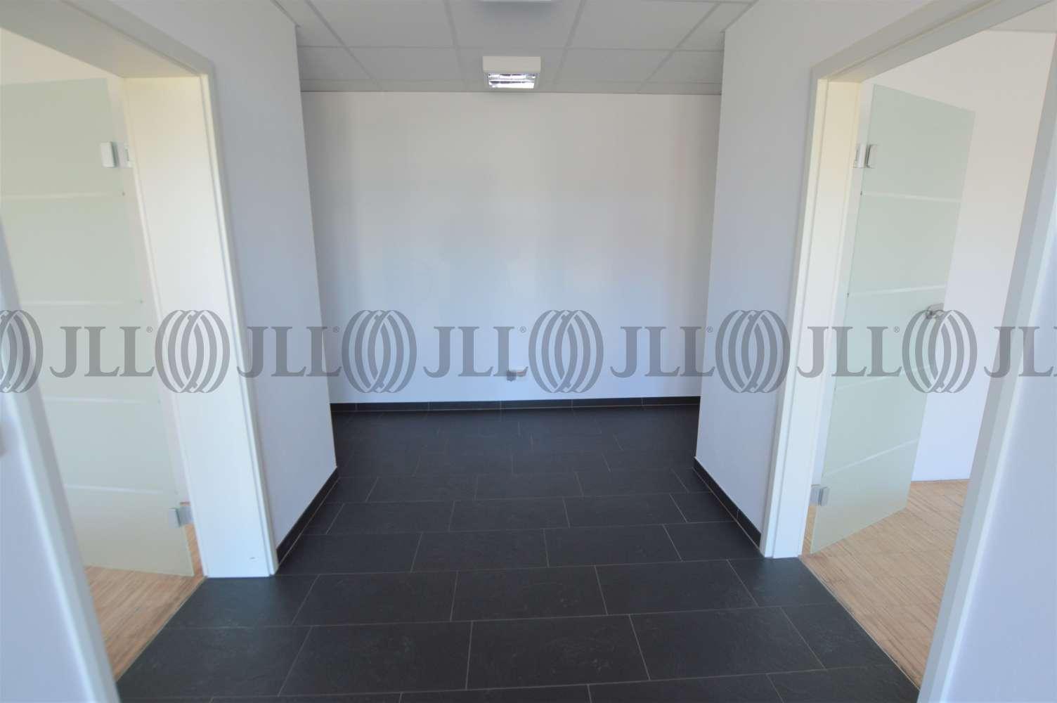 Hallen Grafschaft, 53501 - Halle - Grafschaft, Ringen - K1446 - 10031482