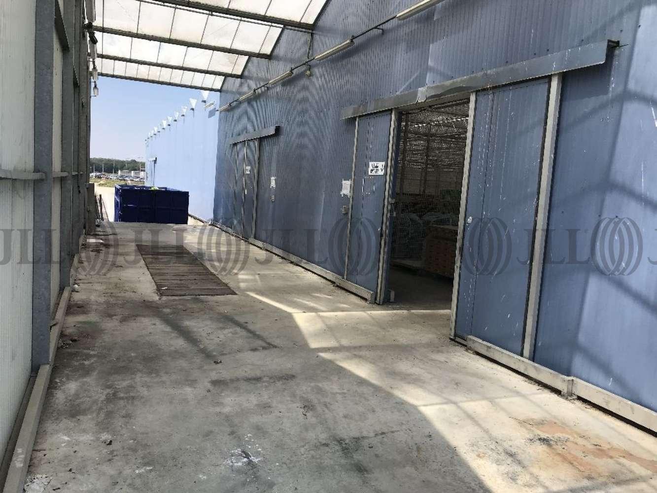 Activités/entrepôt Montagnat, 01250 - Entrepot à louer Lyon Nord-Est - Ain - 10035416
