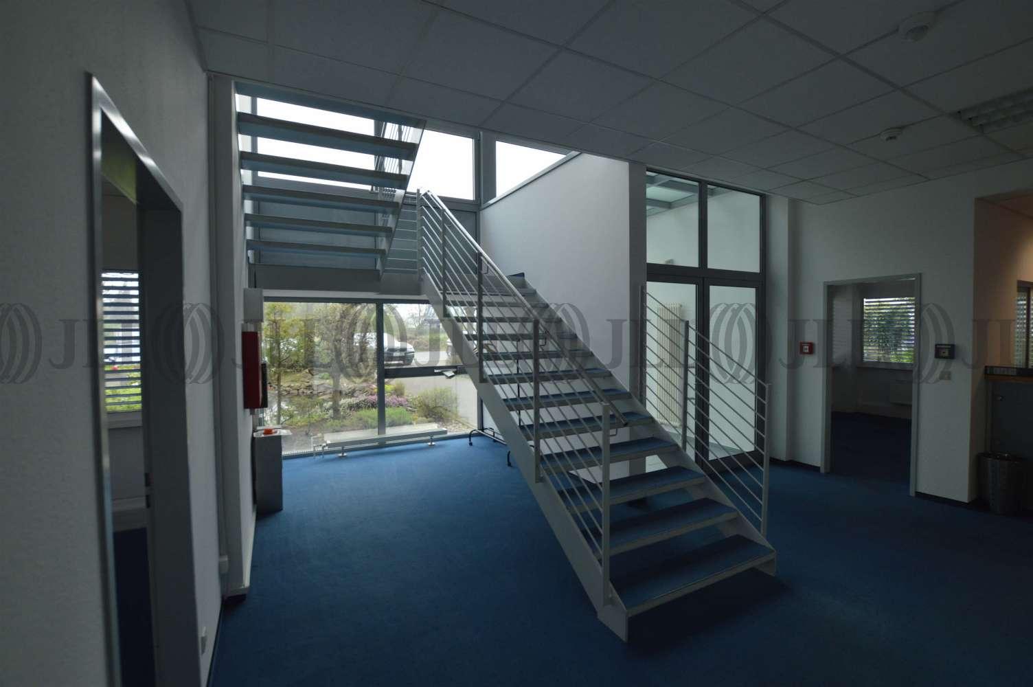 Hallen Brühl, 50321