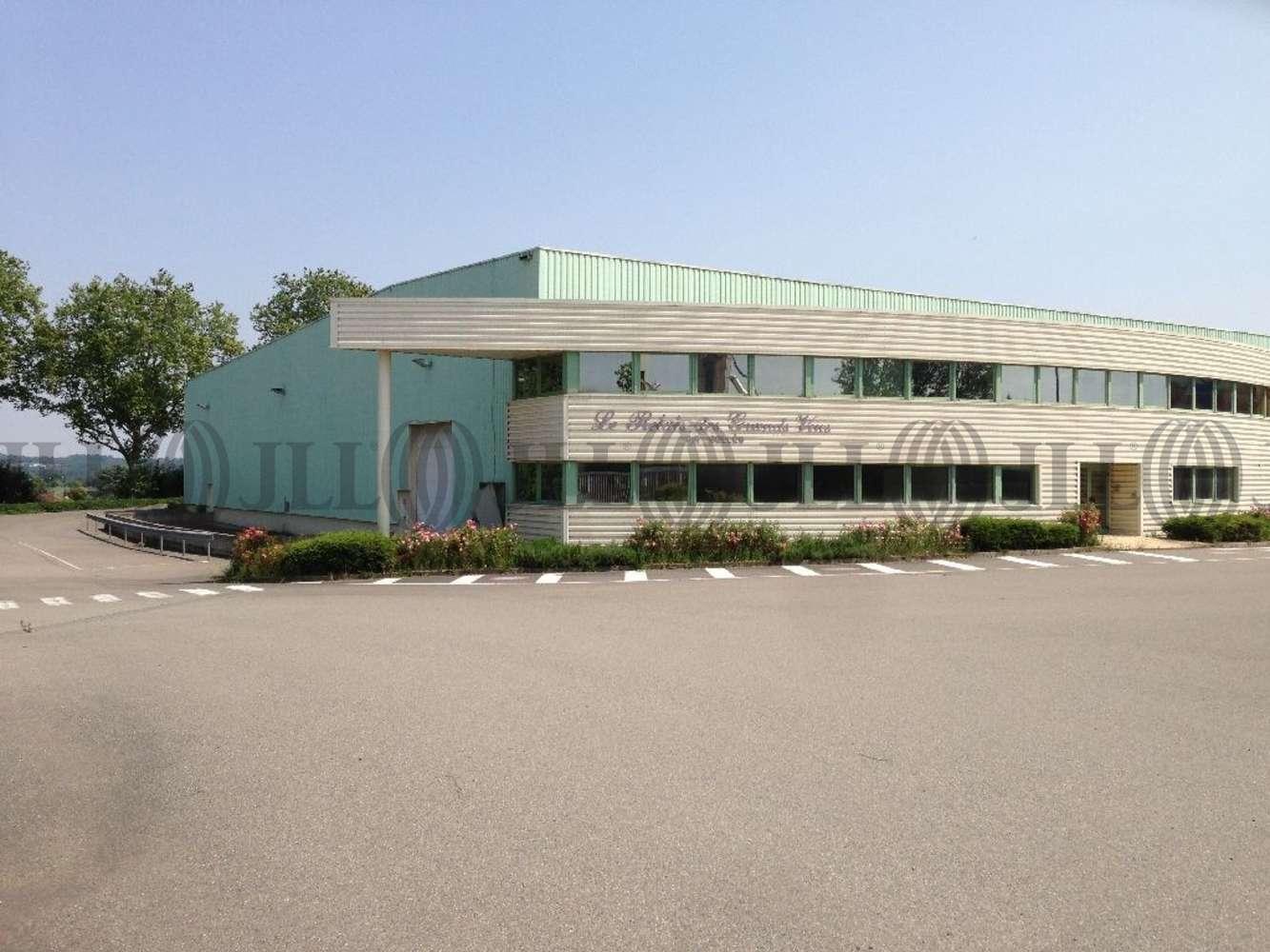 Activités/entrepôt Belleville, 69220 - Entrepôt à louer Lyon Nord - Rhône (69) - 10132932