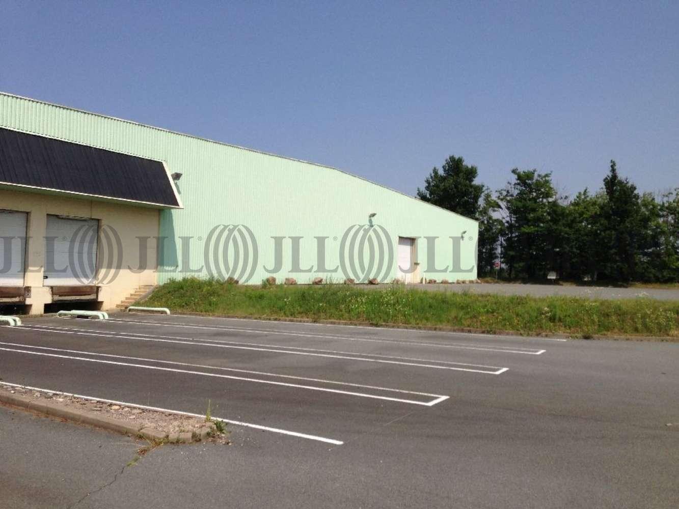 Activités/entrepôt Belleville, 69220 - Entrepôt à louer Lyon Nord - Rhône (69) - 10132933