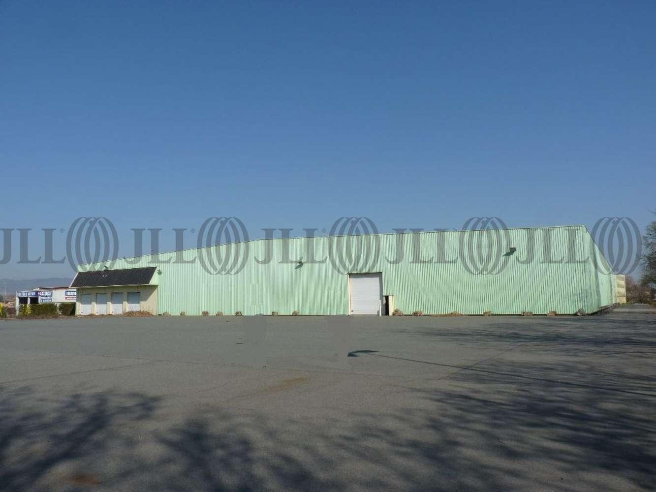 Activités/entrepôt Belleville, 69220 - Entrepôt à louer Lyon Nord - Rhône (69) - 10132934