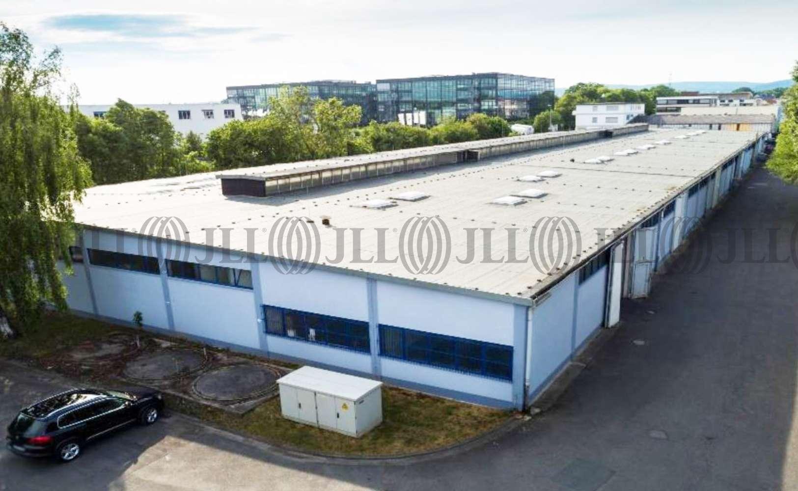 Hallen Hattersheim am main, 65795 - Halle - Hattersheim am Main - F0852 - 10163387