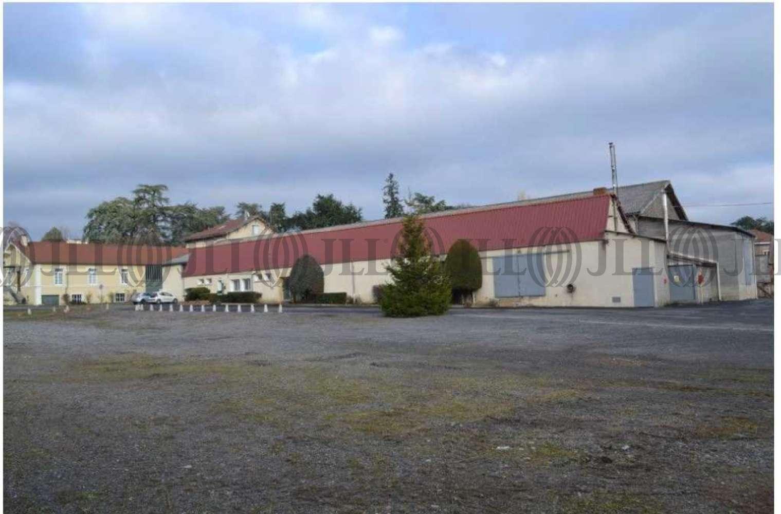 Activités/entrepôt Chazelles sur lyon, 42140 - Locaux d'activité à vendre Lyon Ouest - 10225003