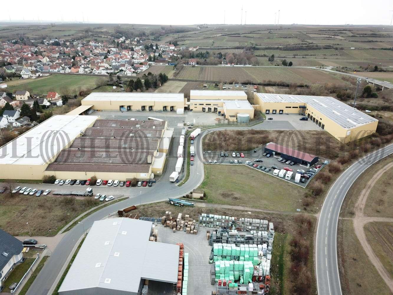 Hallen Alsheim, 67577 - Halle - Alsheim - F2620 - 10235153