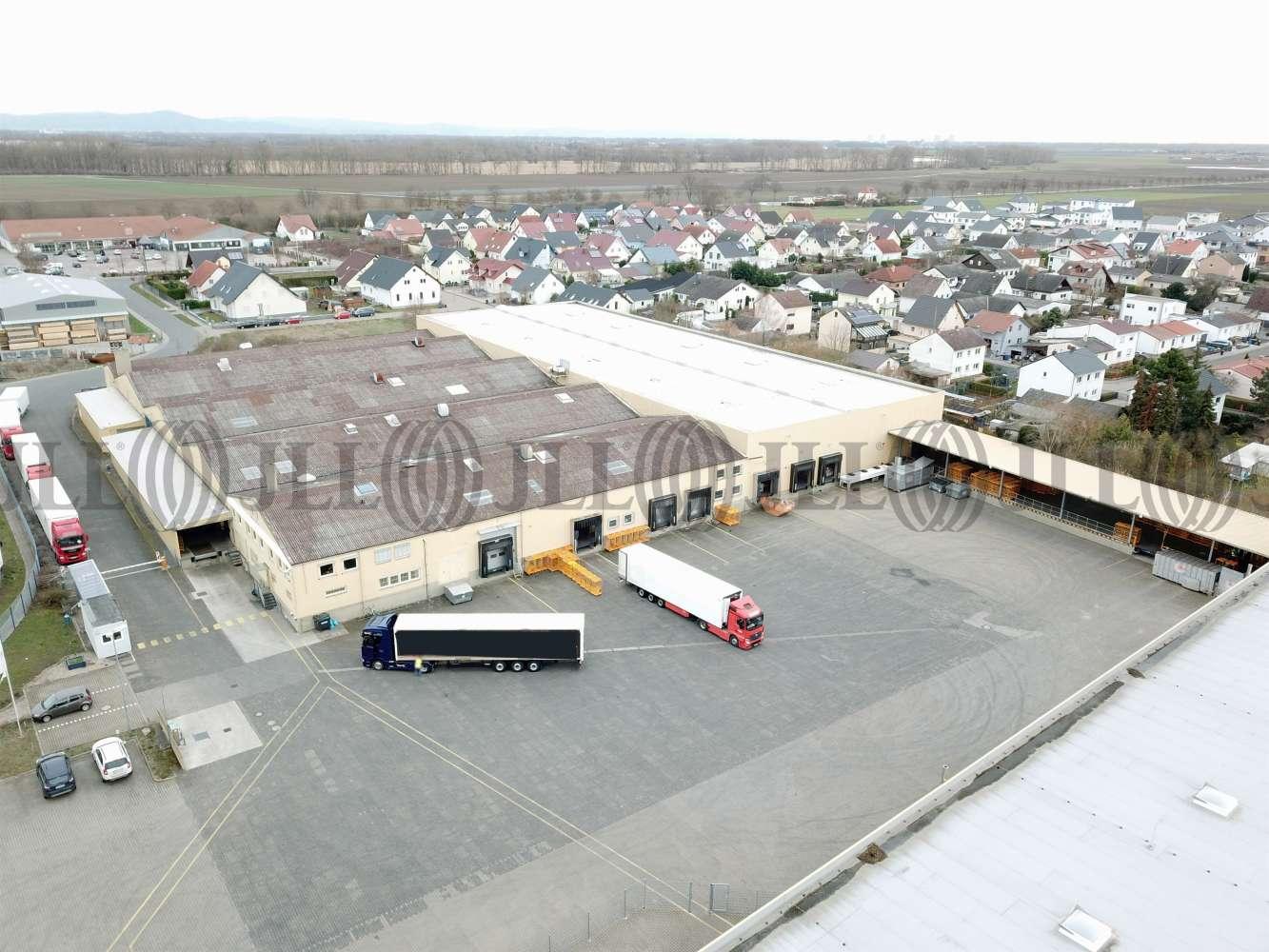 Hallen Alsheim, 67577 - Halle - Alsheim - F2620 - 10235154
