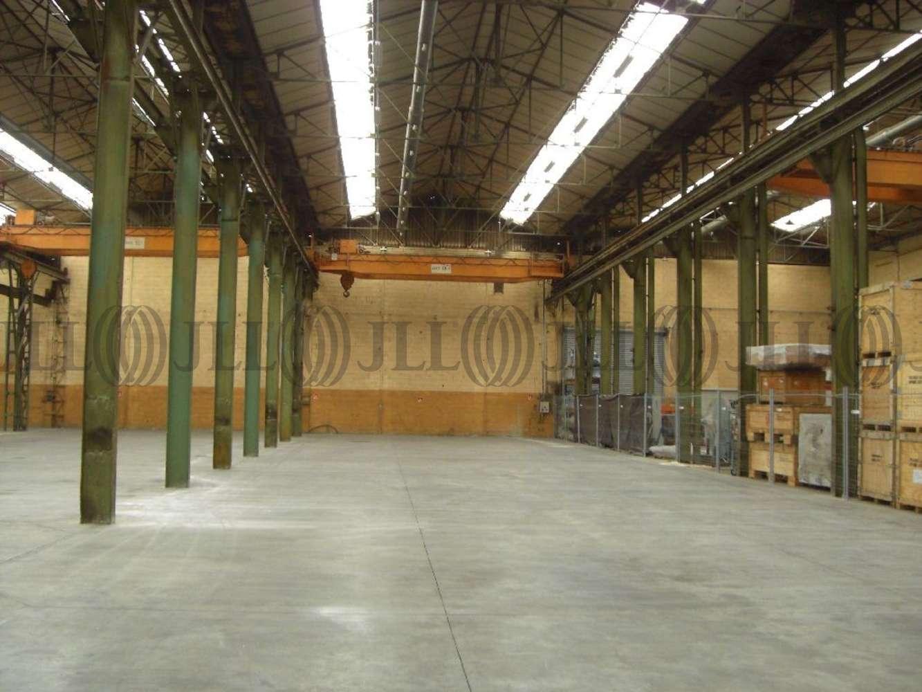 Activités/entrepôt Jassans riottier, 01480 - Entrepot à louer Lyon Nord - 10271386