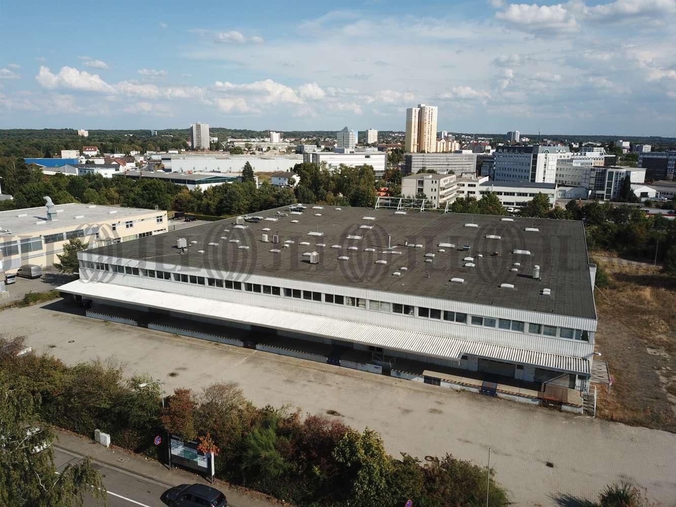Hallen Langen (hessen), 63225 - Halle - Langen (Hessen) - F1229 - 10305423