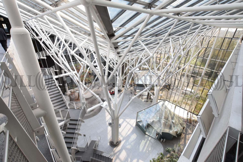Büros Bochum, 44803 - Büro - Bochum, Wiemelhausen - D2589 - 10386428