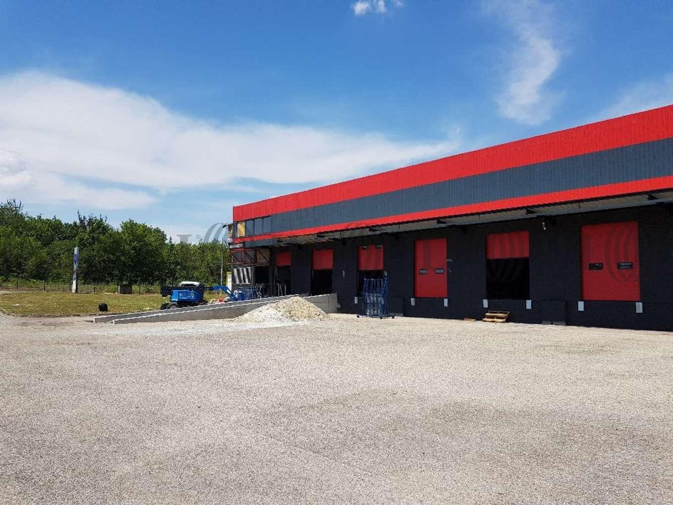 Activités/entrepôt St quentin fallavier, 38070 - Entrepôt à vendre Lyon - Transporteur - 10471272