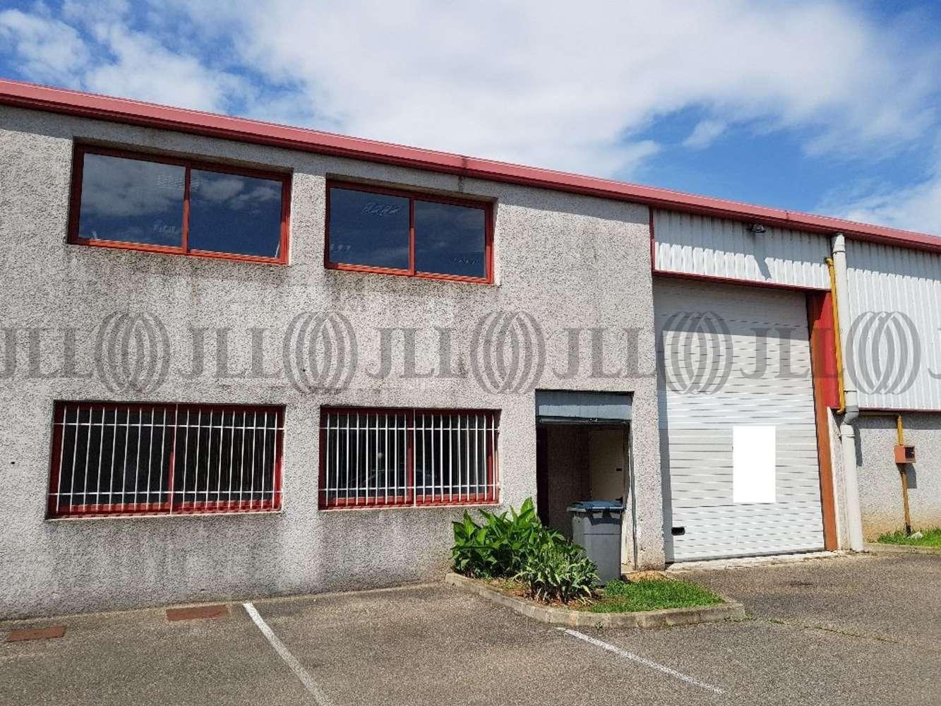 Activités/entrepôt Chassieu, 69680 - LOCATION ENTREPOT LYON EST - CHASSIEU - 10471357