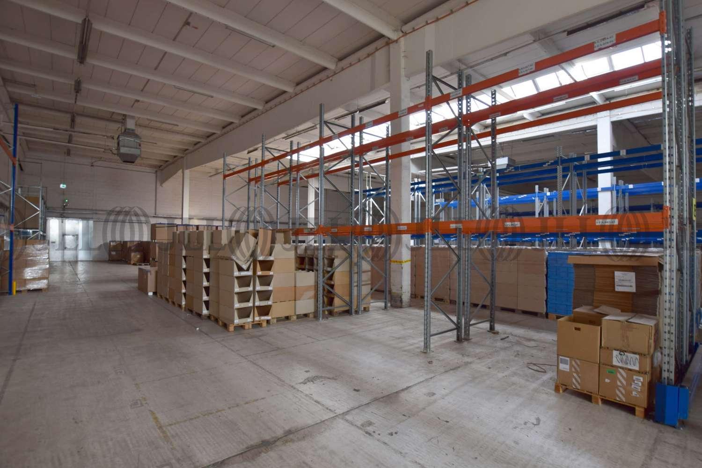 Hallen Essen, 45329 - Halle - Essen, Altenessen-Nord - D1787 - 10478992