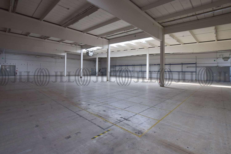 Hallen Essen, 45329 - Halle - Essen, Altenessen-Nord - D1787 - 10478993