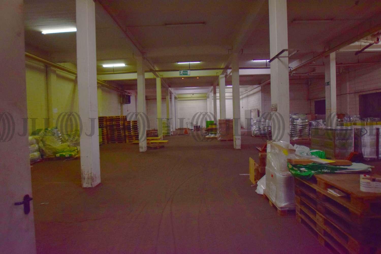 Hallen Essen, 45329 - Halle - Essen, Altenessen-Nord - D1535 - 10482638