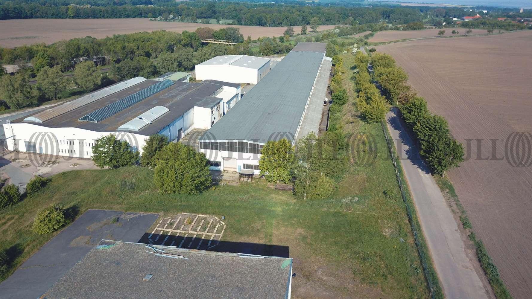 Hallen Gatersleben, 06466 - Halle - Gatersleben - B1799 - 10553570