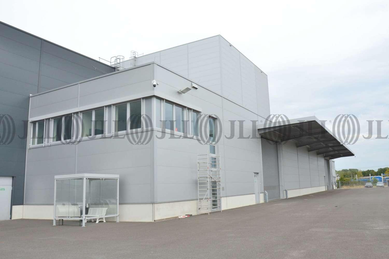 Hallen Krefeld, 47809 - Halle - Krefeld, Gellep-Stratum - D2602 - 10555709