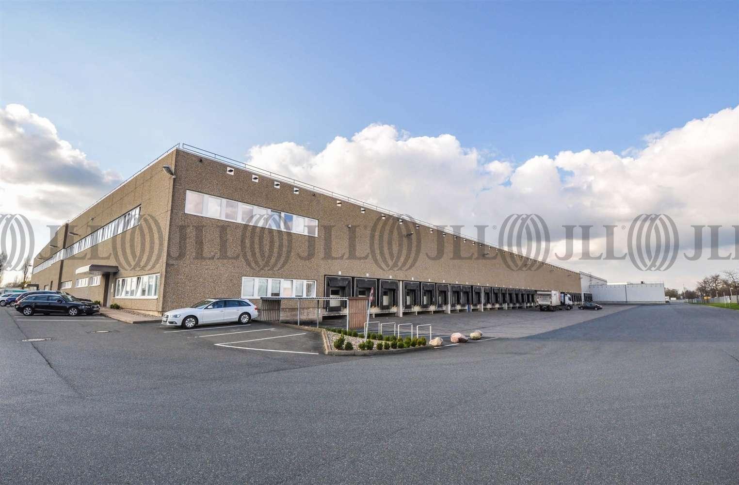 Hallen Wunstorf, 31515 - Halle - Wunstorf, Luthe - H1350 - 10608571