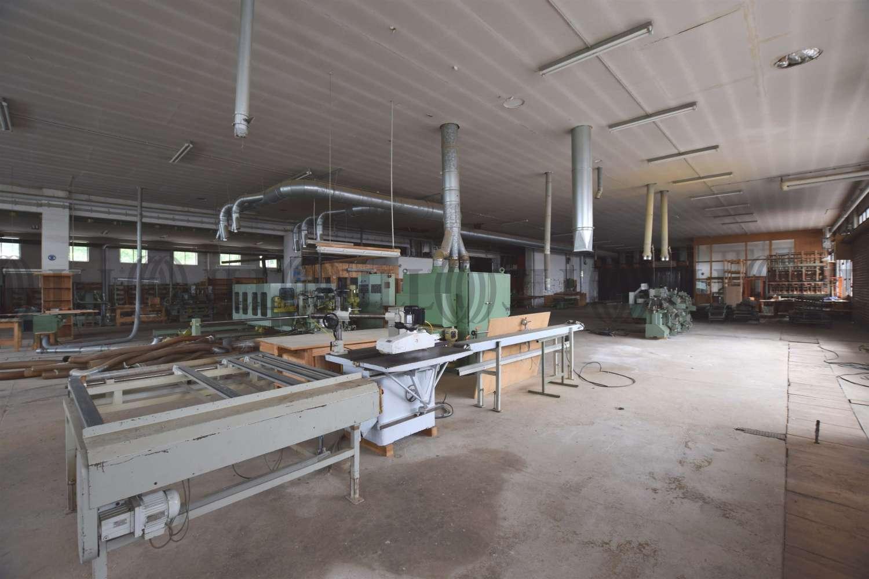 Hallen Wittibreut, 84384 - Halle - Wittibreut, Wald - M1267 - 10629273