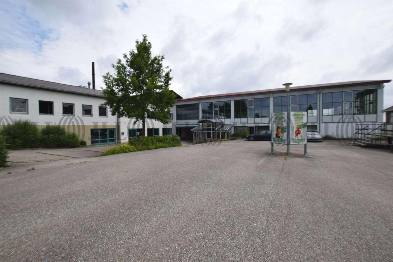 Hallen Wittibreut, 84384 - Halle - Wittibreut, Wald - M1267 - 10629278