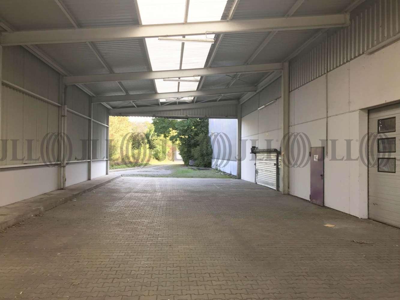 Hallen Leimen, 69181 - Halle - Leimen - F0892 - 10675380