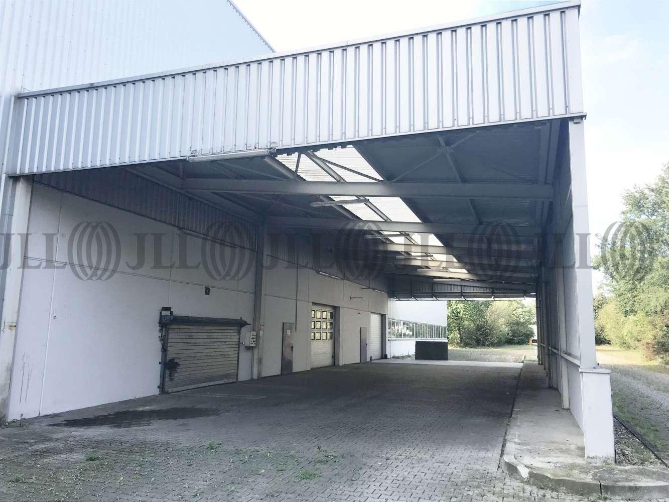Hallen Leimen, 69181 - Halle - Leimen - F0892 - 10675381