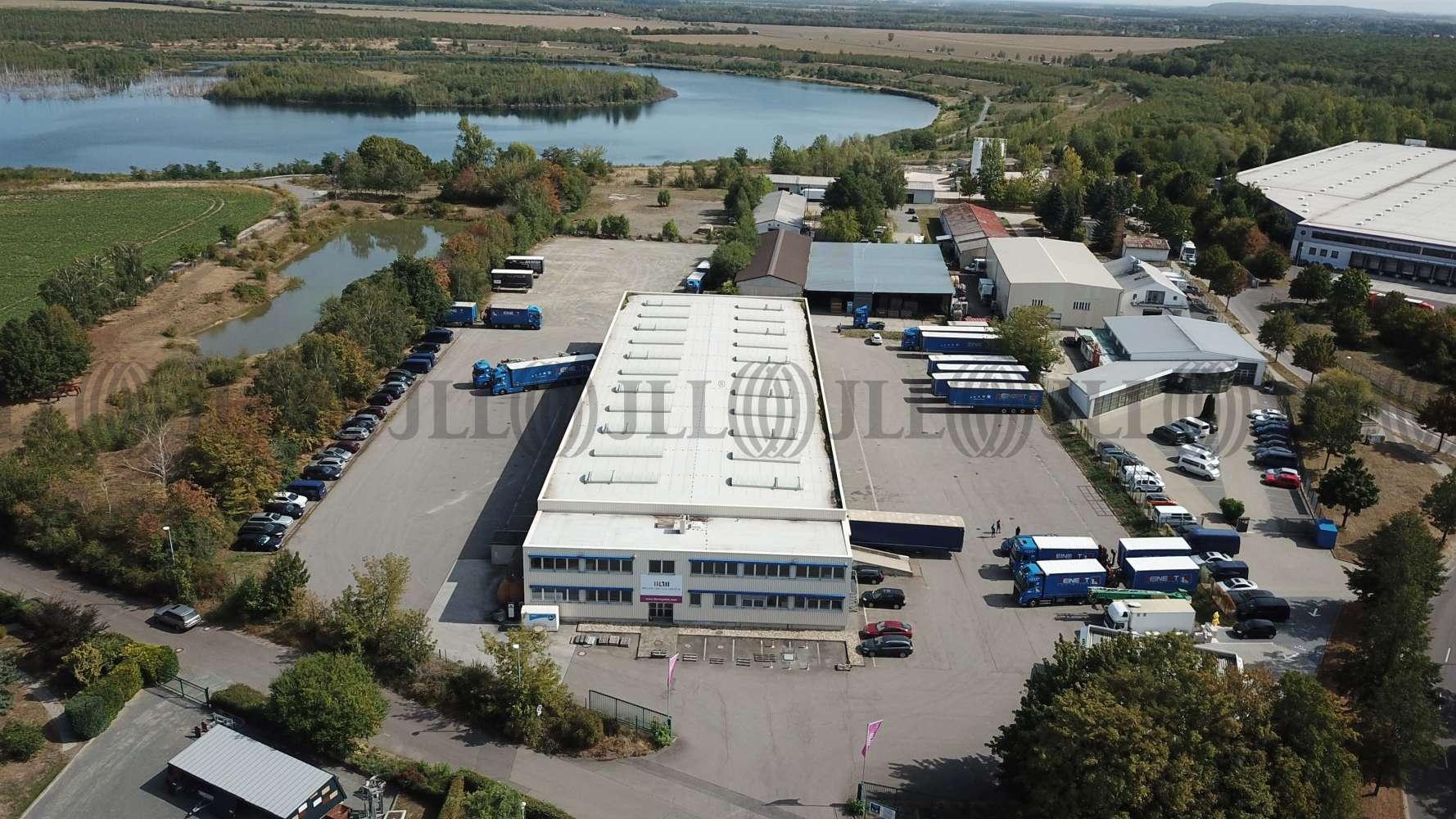 Hallen Zwenkau, 04442 - Halle - Zwenkau - B1823 - 10702837