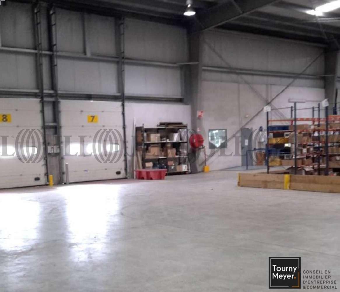 Activités/entrepôt Lespinasse, 31150 - RUE DU BENELUX - 10765274