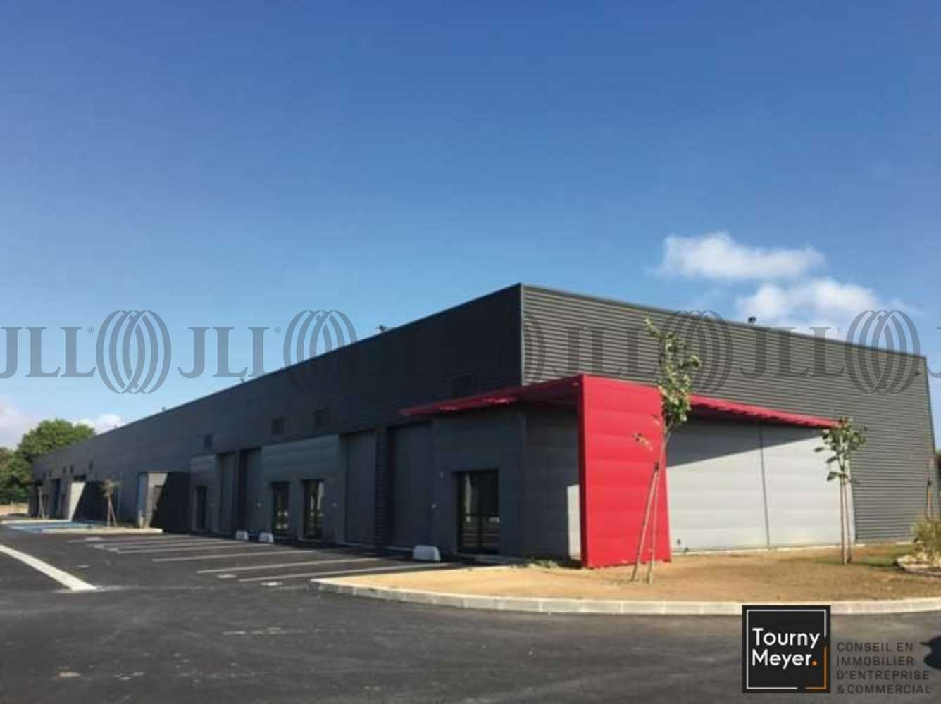 Activités/entrepôt Bouloc, 31620 - IMPASSE THALES - 10765640