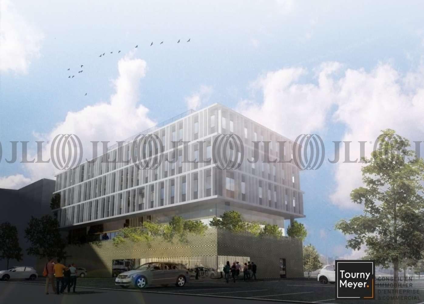 Bureaux Toulouse, 31400 - RUE BERNARD MARIS - 10765793