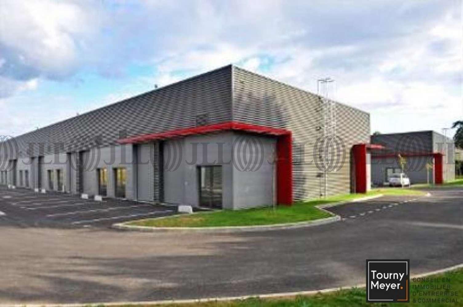 Activités/entrepôt Plaisance du touch, 31830 - IMPASSE ADA LOVELACE - 10765840