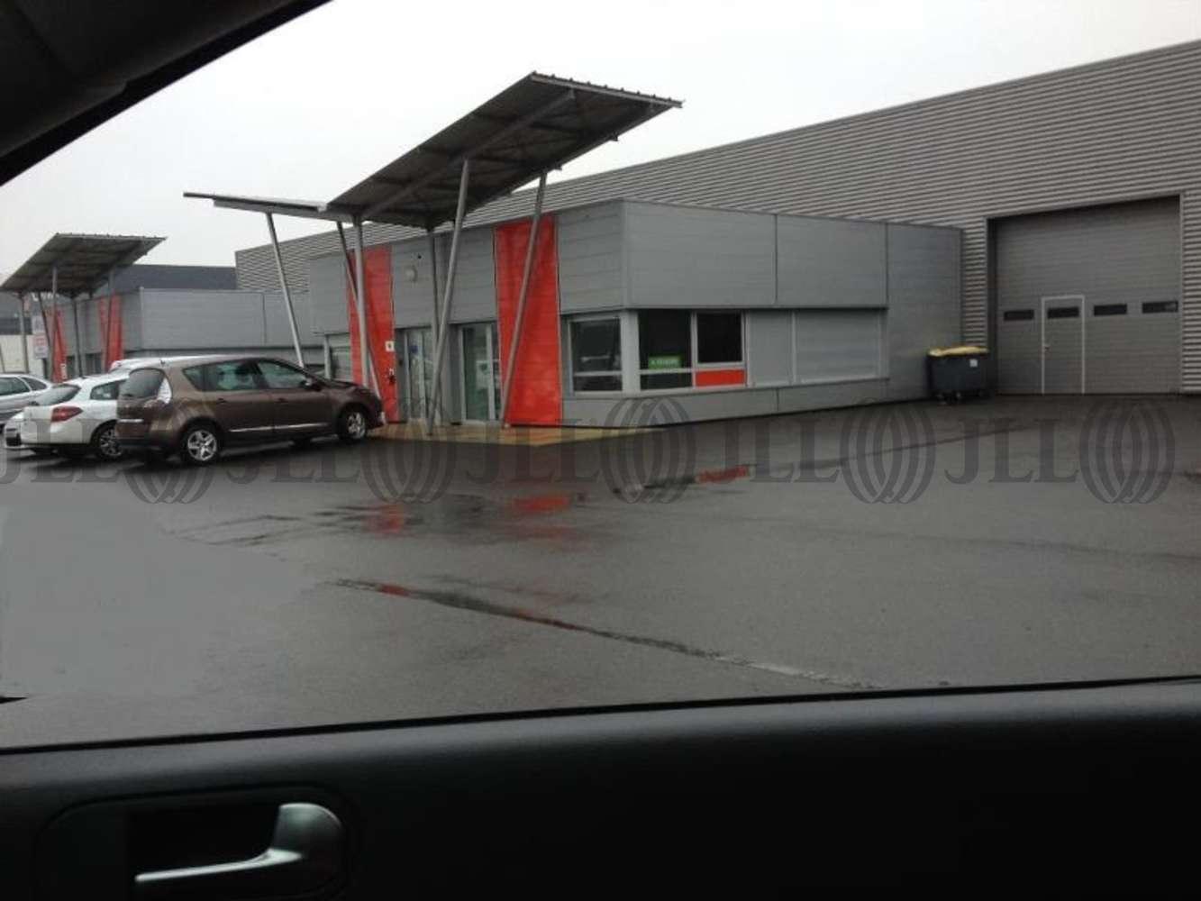 Activités/entrepôt Notre dame d oe, 37390 - RUE ALEXANDRE CALDER - 10775046