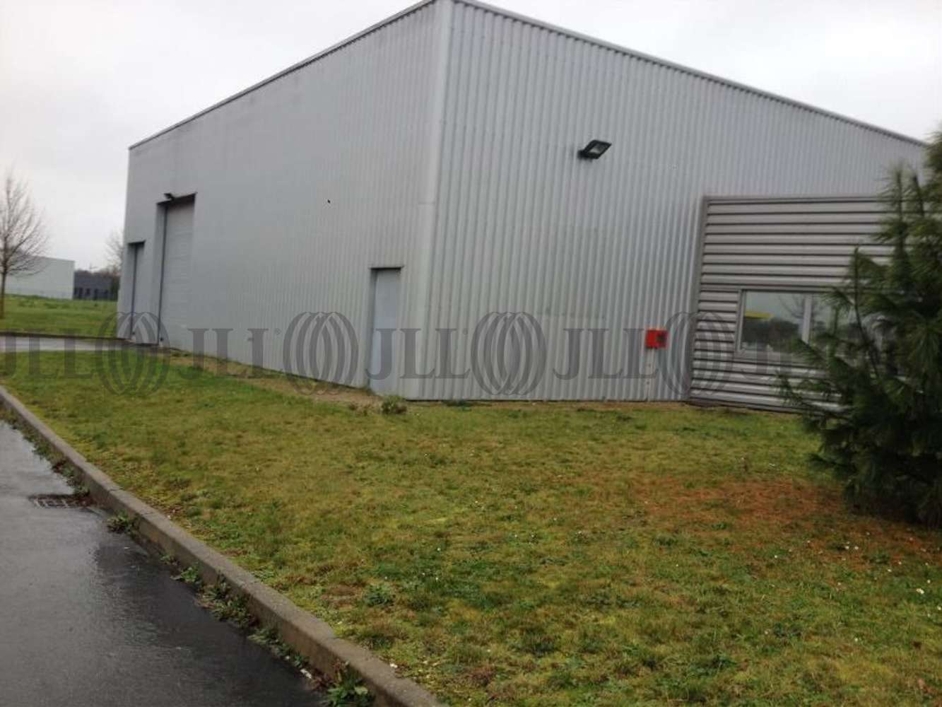 Activités/entrepôt Esvres, 37320 - RUE AMEDEE ET LEON BOLLEE - 10775113