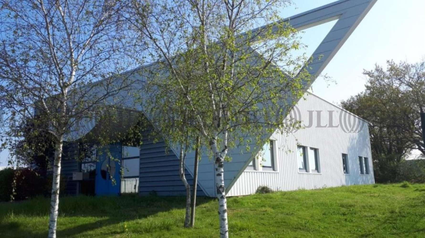 Bureaux Beaucouze, 49070 - RUE DE LA CLAIE - 10775125