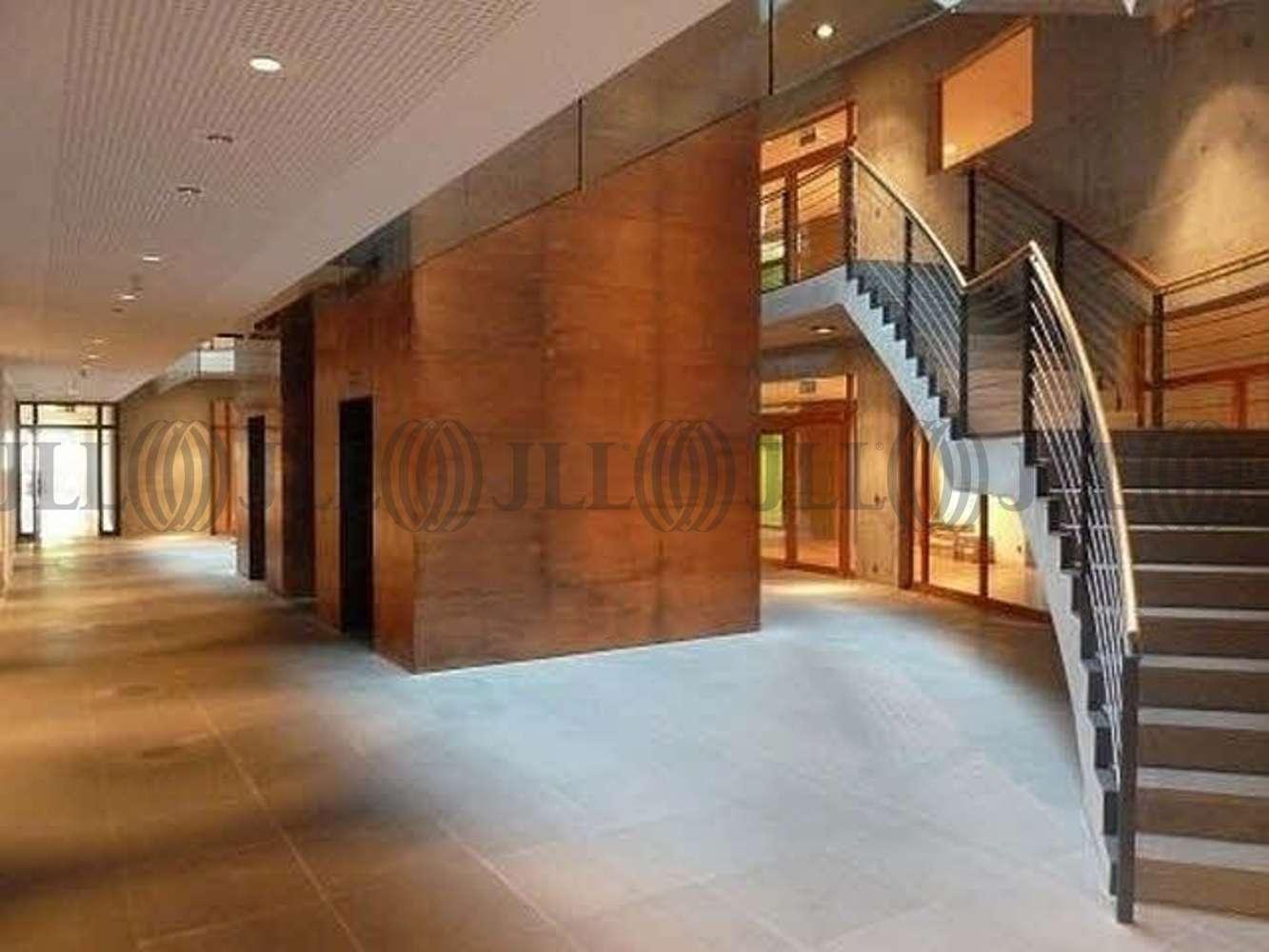 Büros Frankfurt am main, 60439 - Büro - Frankfurt am Main - F2276 - 10804471