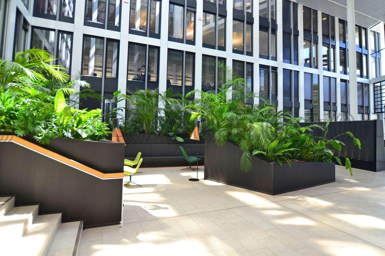 Büros Köln, 50668 - Büro - Köln, Altstadt-Nord - K0174 - 10804554
