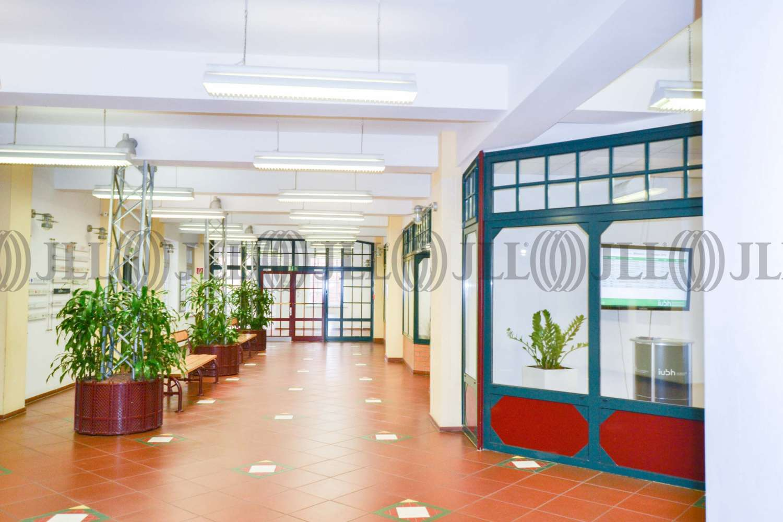 Büros Düsseldorf, 40215 - Büro - Düsseldorf, Friedrichstadt - D0048 - 10817558