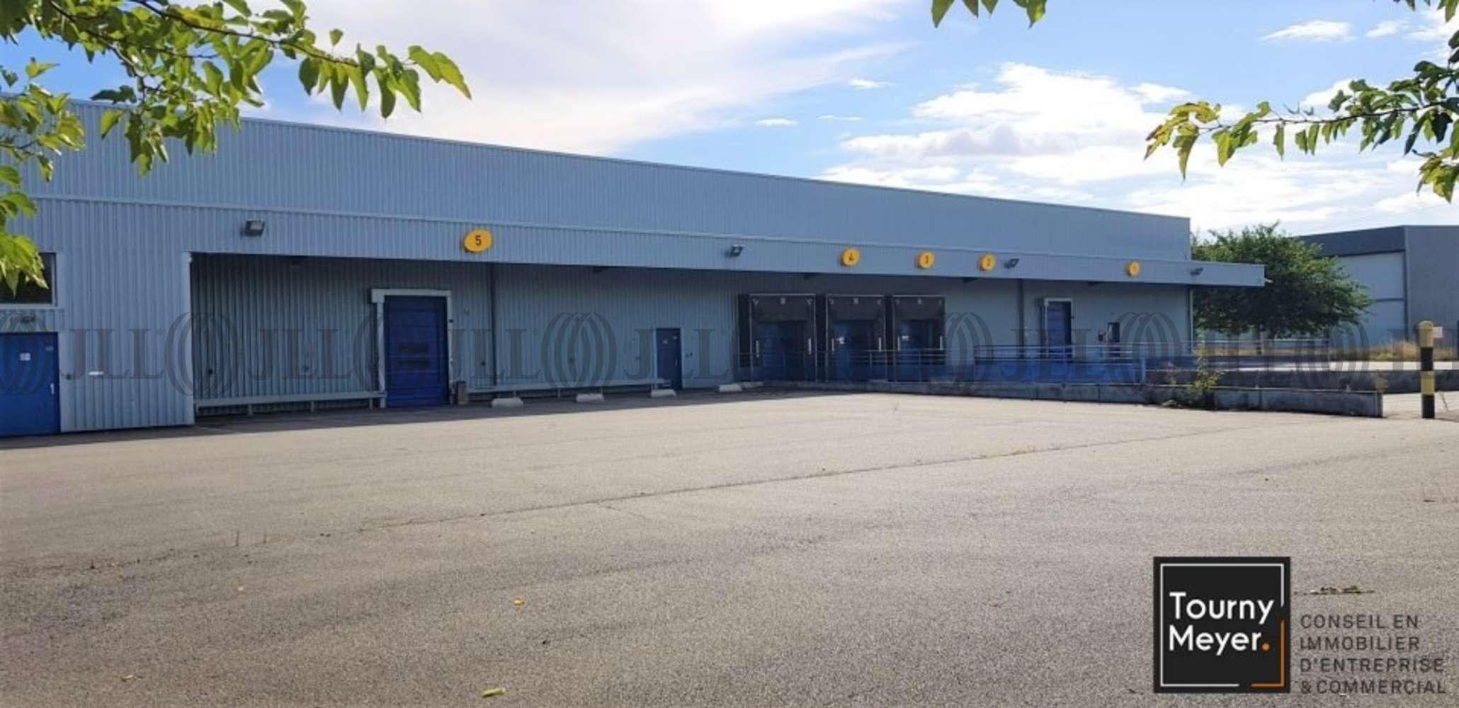 Activités/entrepôt St alban, 31140 - 1 IMPASSE DES BATTANTS - 10860939