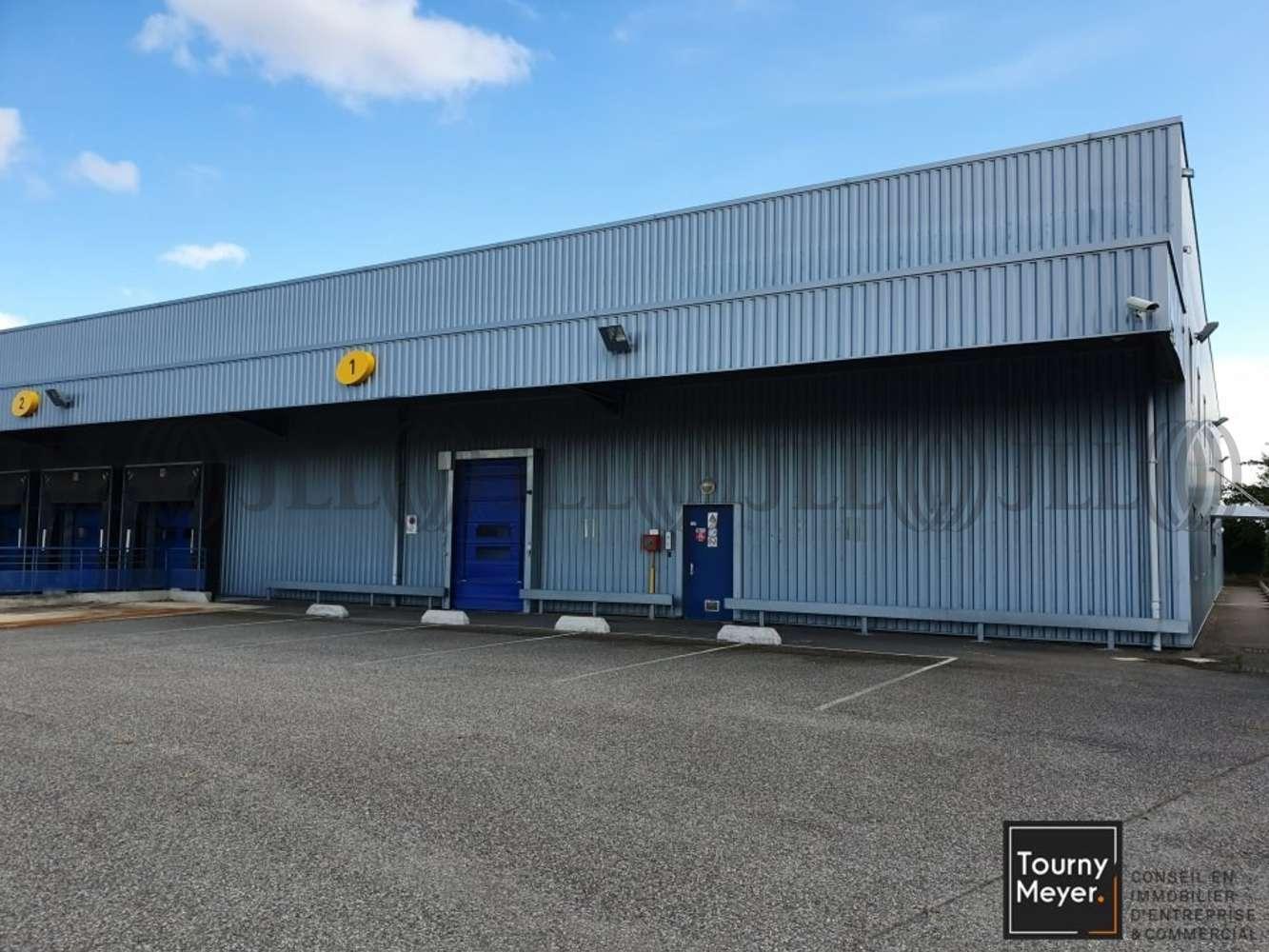 Activités/entrepôt St alban, 31140 - 1 IMPASSE DES BATTANTS - 10860940