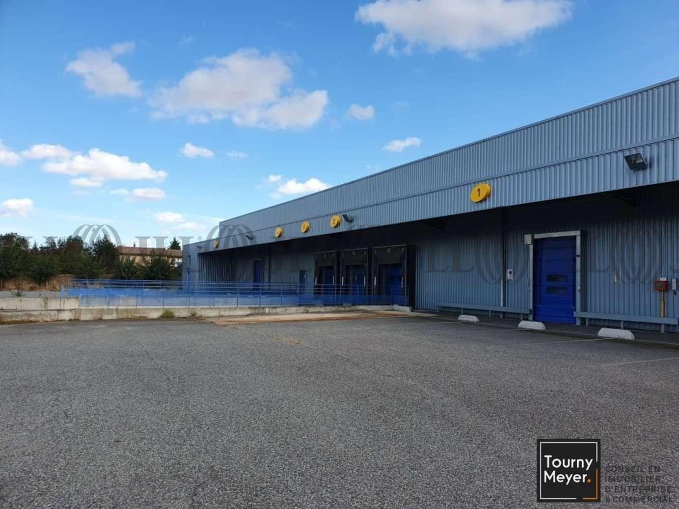 Activités/entrepôt St alban, 31140 - 1 IMPASSE DES BATTANTS - 10860941