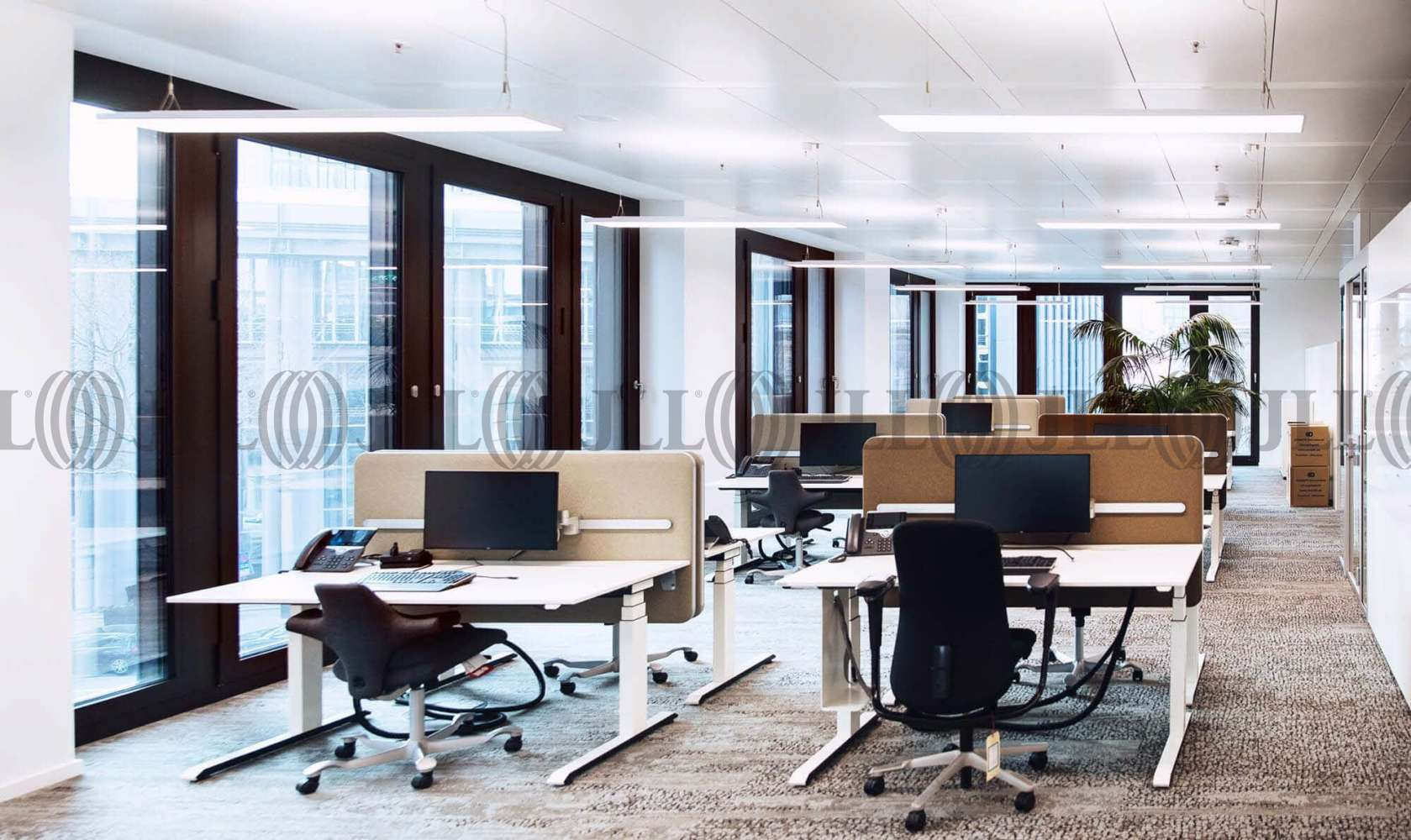 Büros Frankfurt am main, 60329 - Büro - Frankfurt am Main, Bahnhofsviertel - F2465 - 10873440