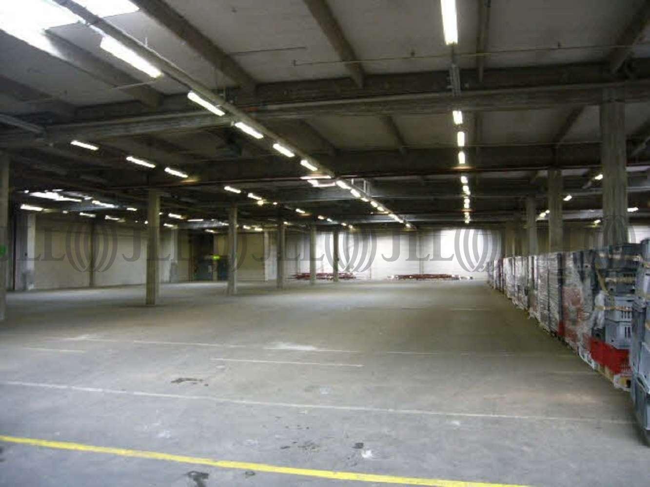 Hallen Düsseldorf, 40229 - Halle - Düsseldorf, Eller - D0221 - 10875998