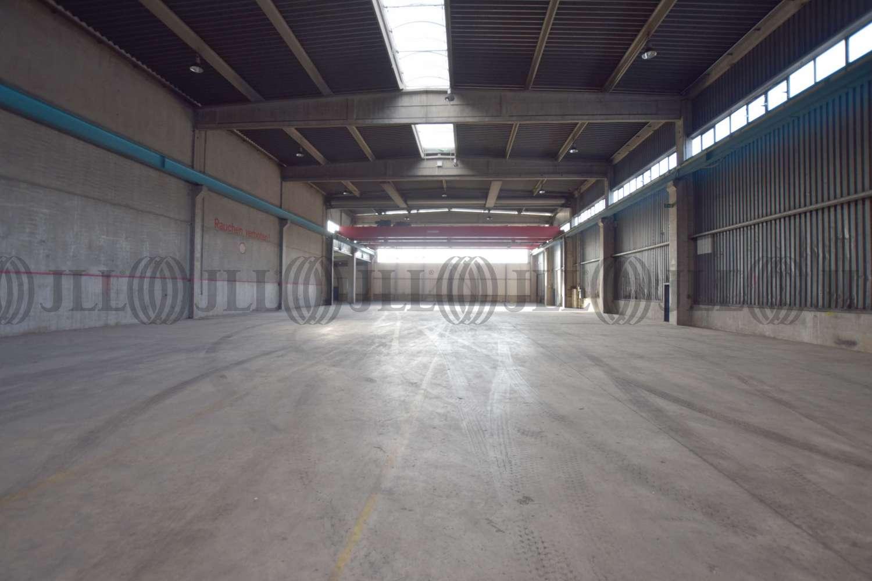 Hallen Neuss, 41460 - Halle - Neuss, Hafengebiet - D2614 - 10877068