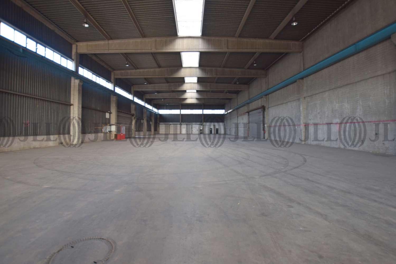 Hallen Neuss, 41460 - Halle - Neuss, Hafengebiet - D2614 - 10877069