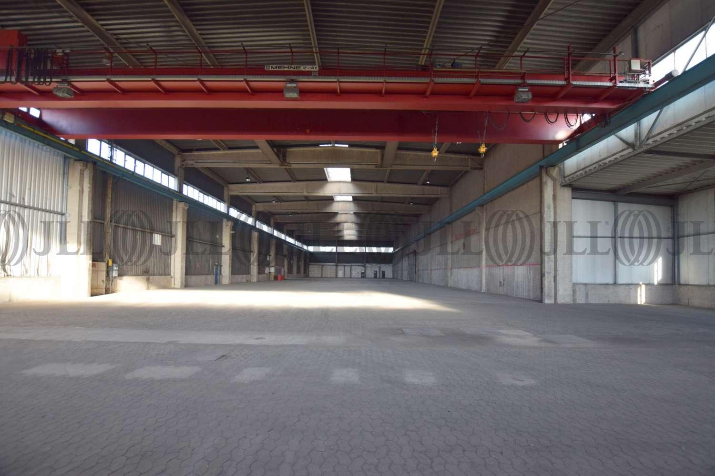Hallen Neuss, 41460 - Halle - Neuss, Hafengebiet - D2614 - 10877070